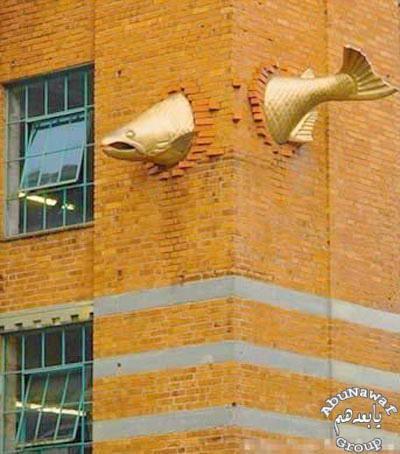 جنون المعمار fishlarge.jpg