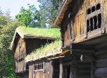 house with sod roof
